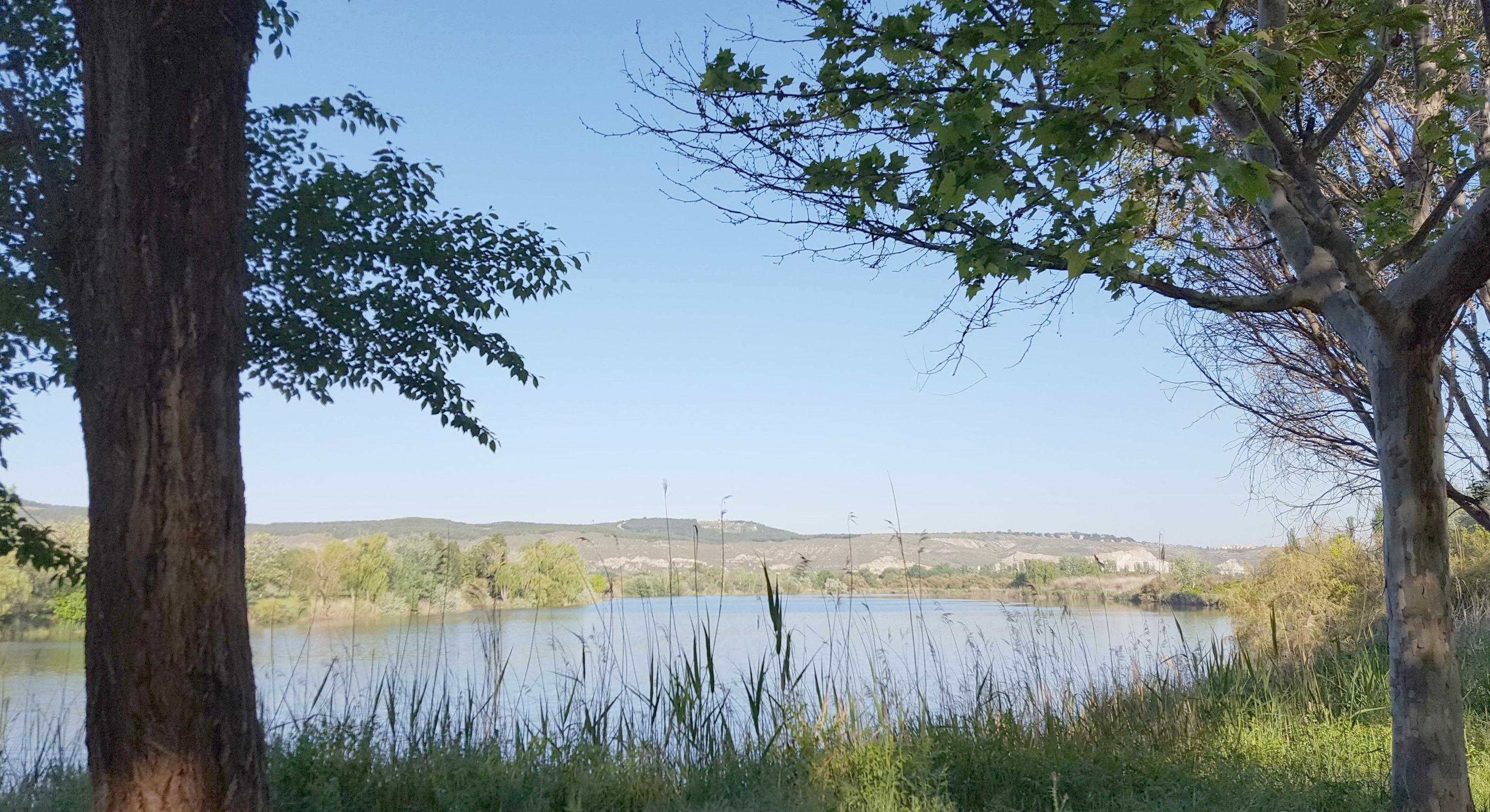 El Ayuntamiento ha conseguido que se realice un estudio integral de la Laguna El Raso que financiará la CAM