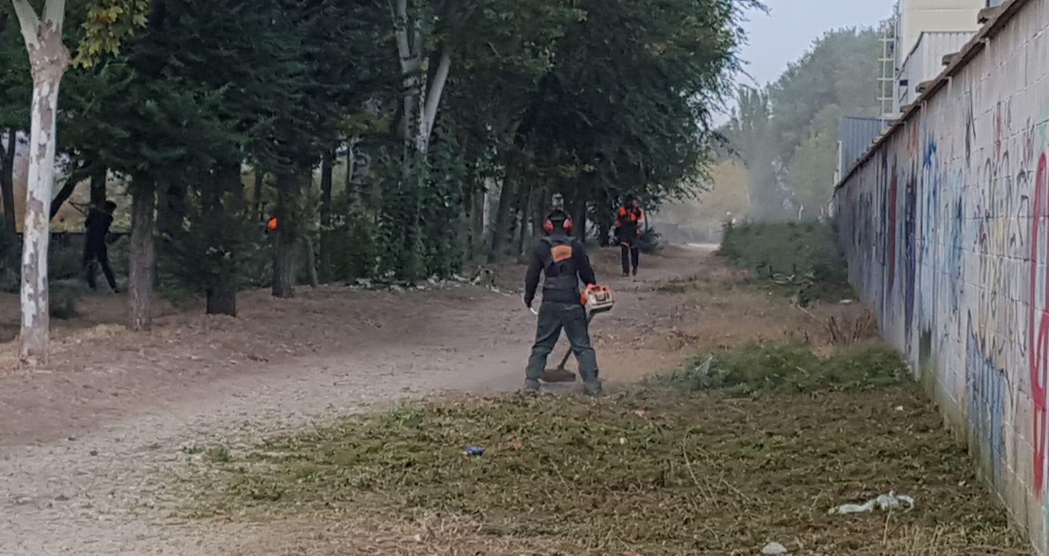 El Parque Regional del Sureste atiende la petición del Ayuntamiento de Velilla para realizar labores de limpieza y mantenimiento de la Laguna El Raso