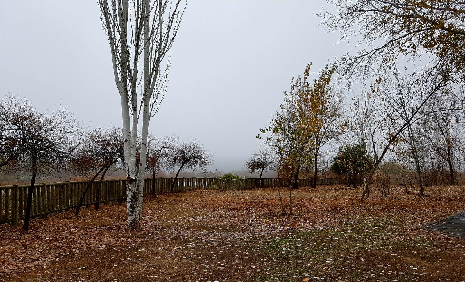 El Ayuntamiento de Velilla continúa trabajando para mejorar el espacio de la laguna El Raso