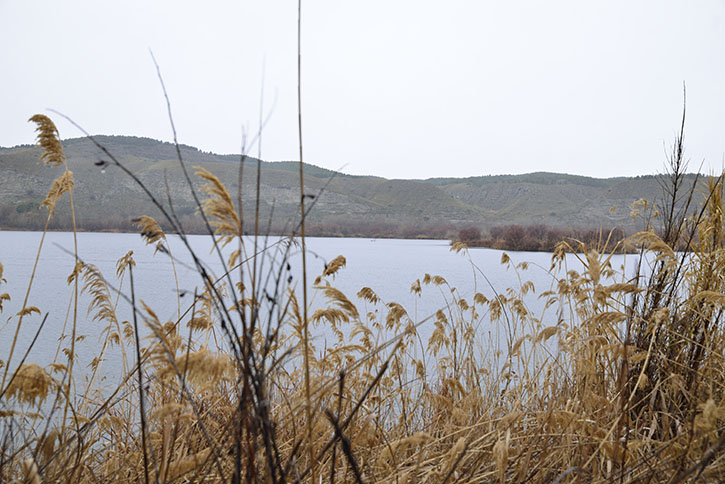La visita guiada a las lagunas de Velilla se ha pospuesto para el mes de abril