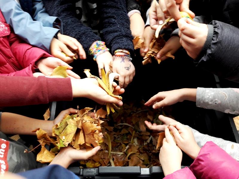 El compostaje llega a los colegios de Velilla