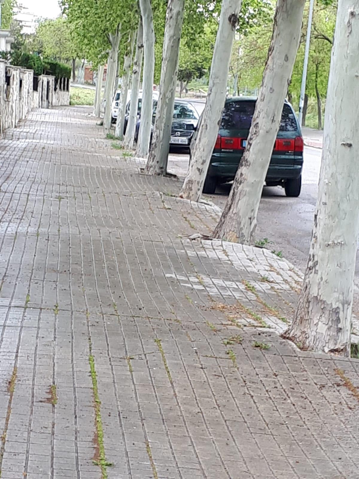 Mañana comenzarán los trabajos de remodelación de aproximadamente 2.000 metros cuadrados de aceras en Velilla