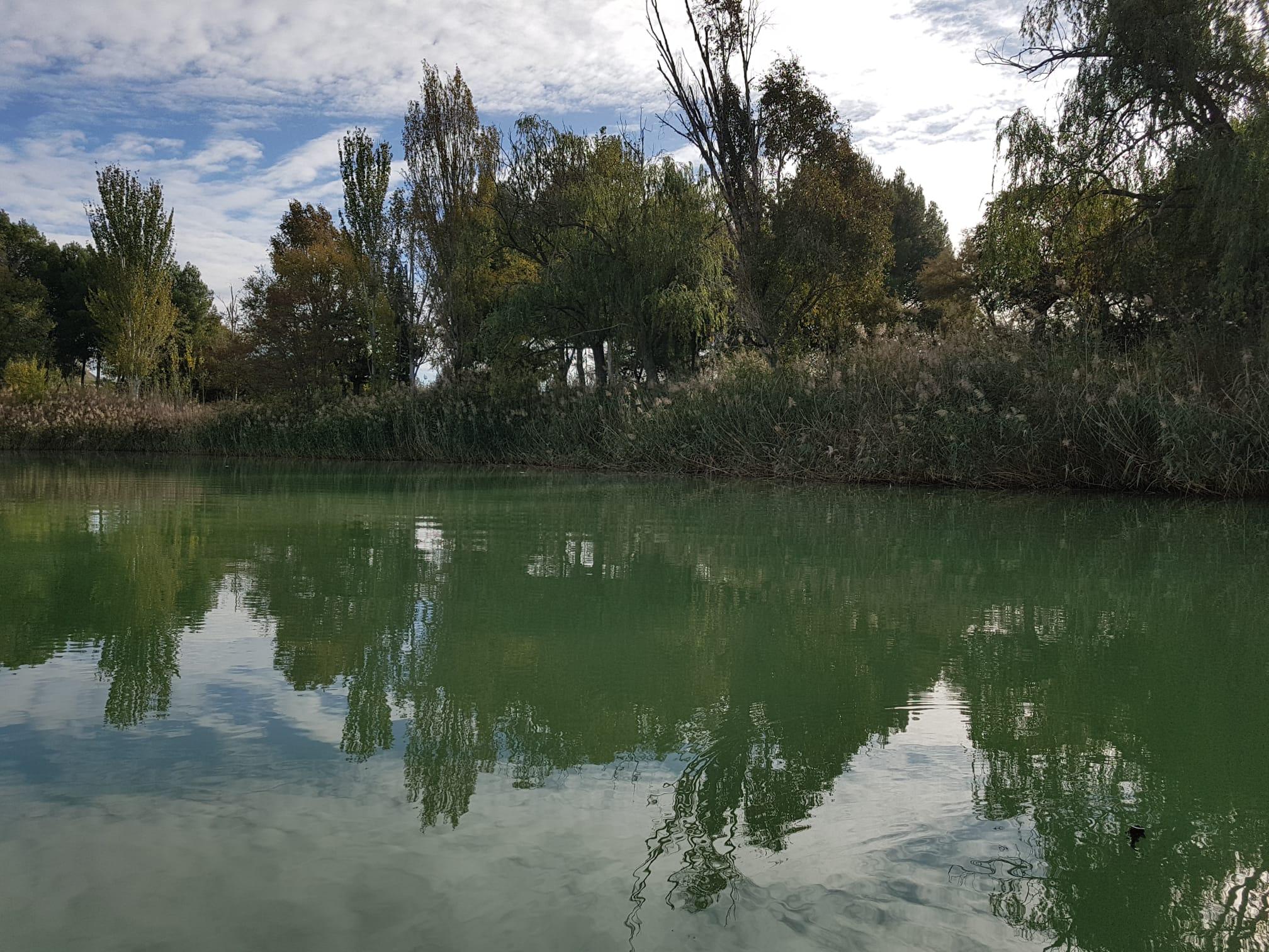 Durante esta semana, y como consecuencia de un proceso natural, la laguna El Raso ha sufrido un cambio de coloración en la lámina de agua provocada por la falta de oxígeno, así como la emisión de un olor desagradable
