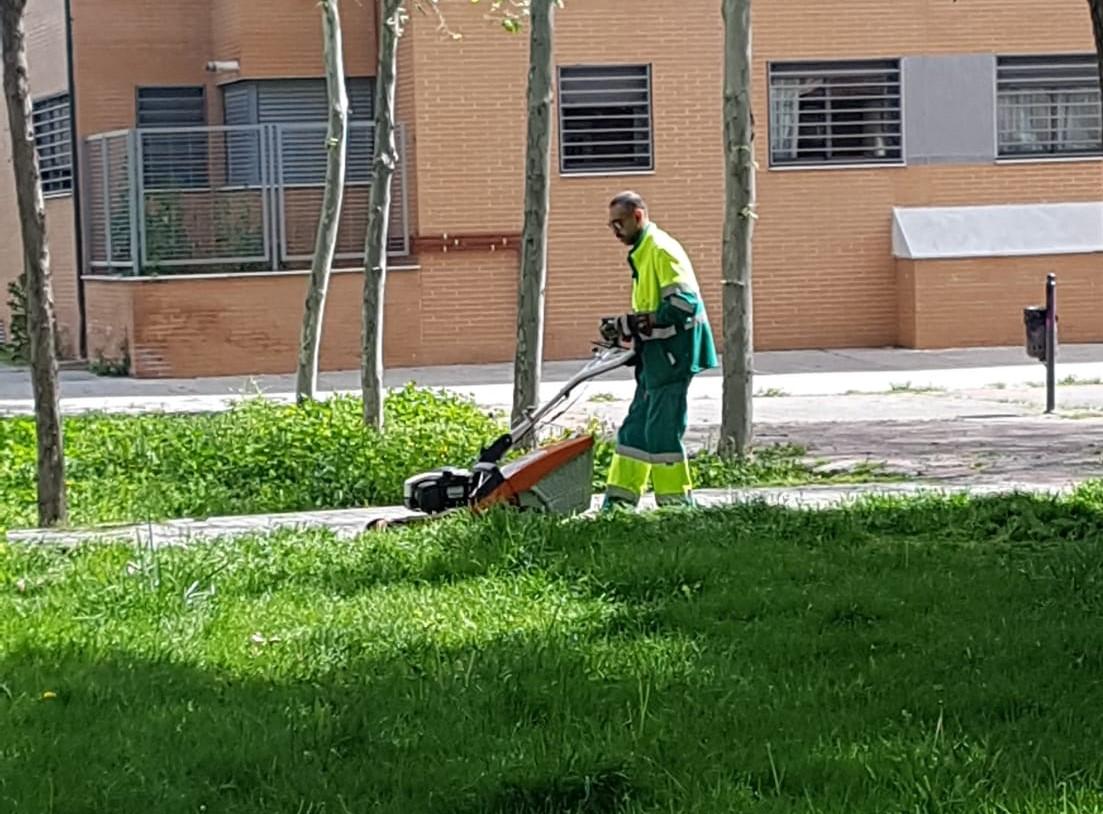 El Área de Parques y Jardines retomó su actividad este lunes