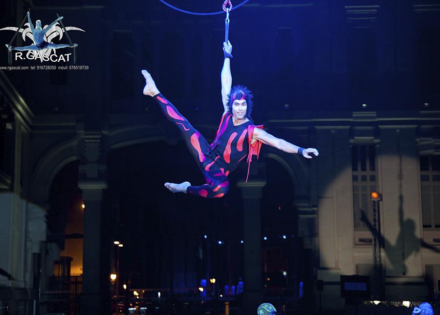 HYBRIDUS Circo
