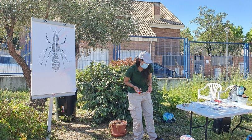 El Ayuntamiento ha comenzado a impartir los talleres sobre el mosquito tigre en los centros educativos del municipio