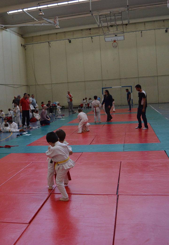 2016 Campeonato de Primavera de Judo