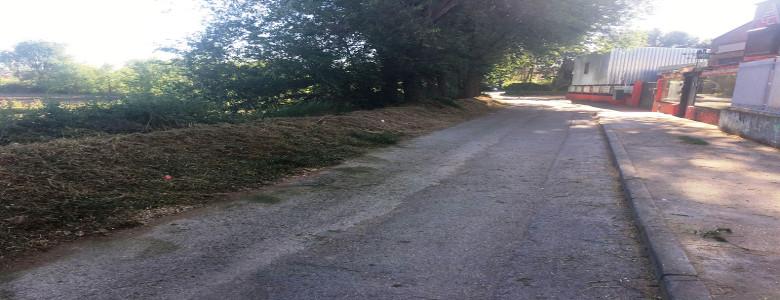 Trabajos de desbroce en el polígono La Huerta y la Laguna El Raso