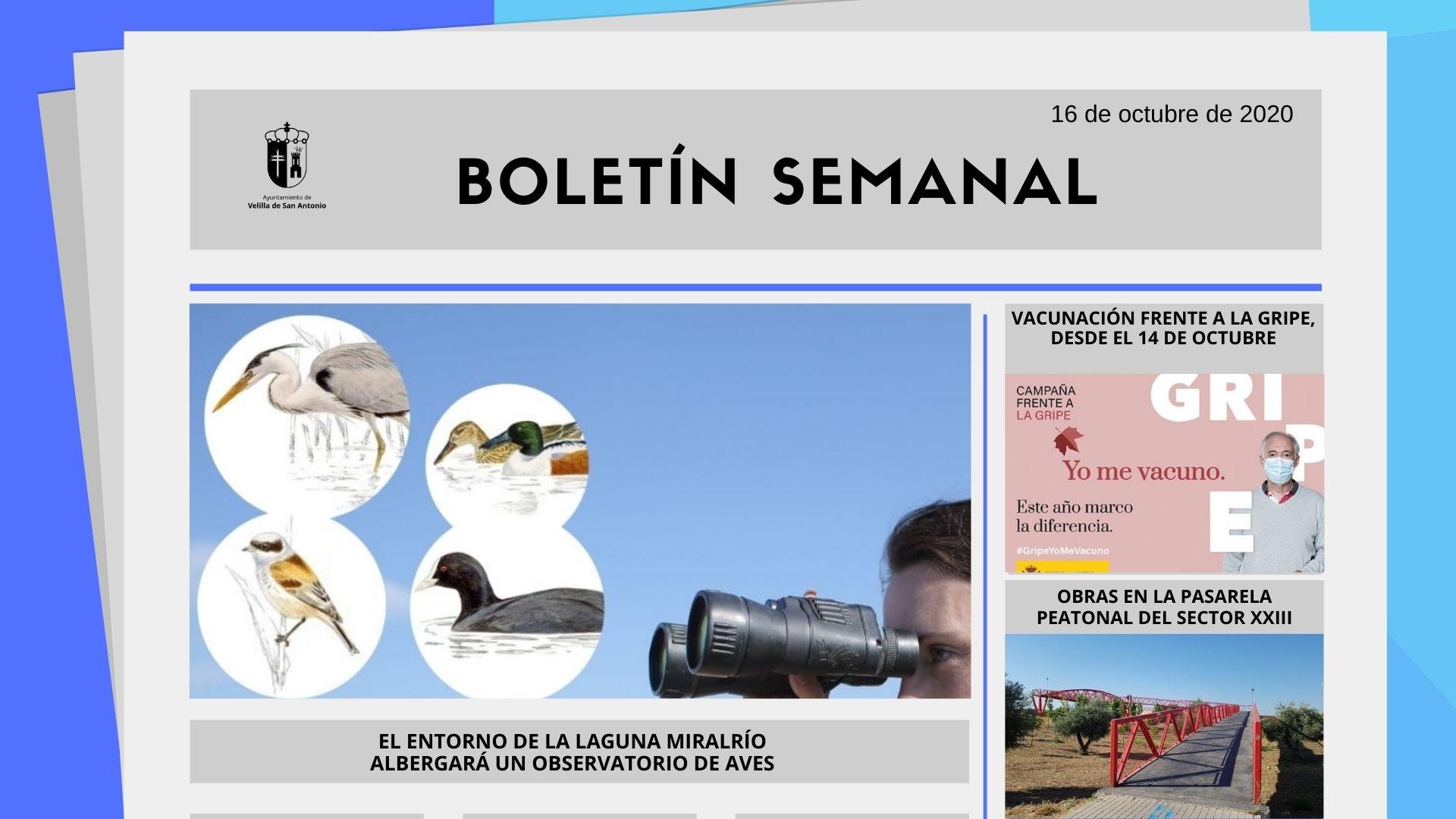 Boletín Semanal 42/2020