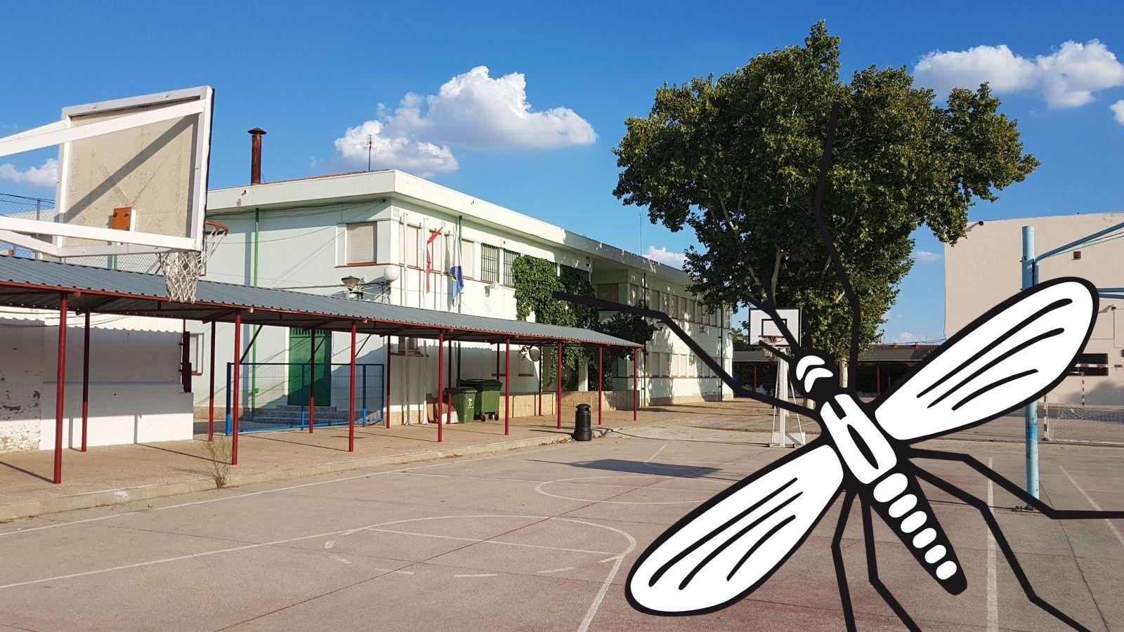 Campaña de sensibilización sobre el mosquito tigre en los centros educativos