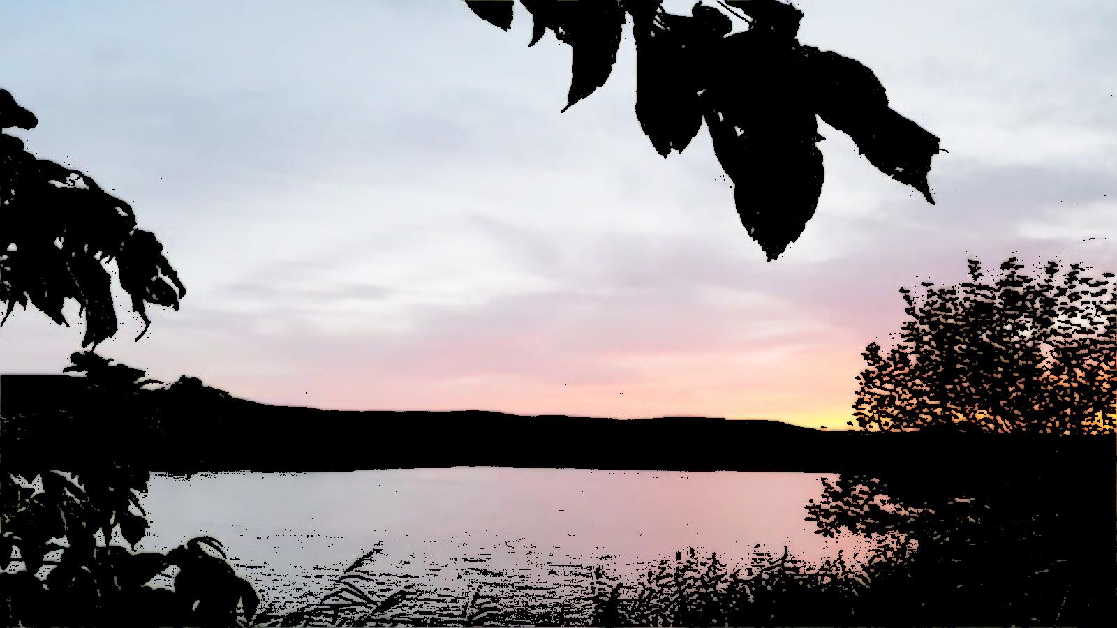 Las Noches en la Laguna