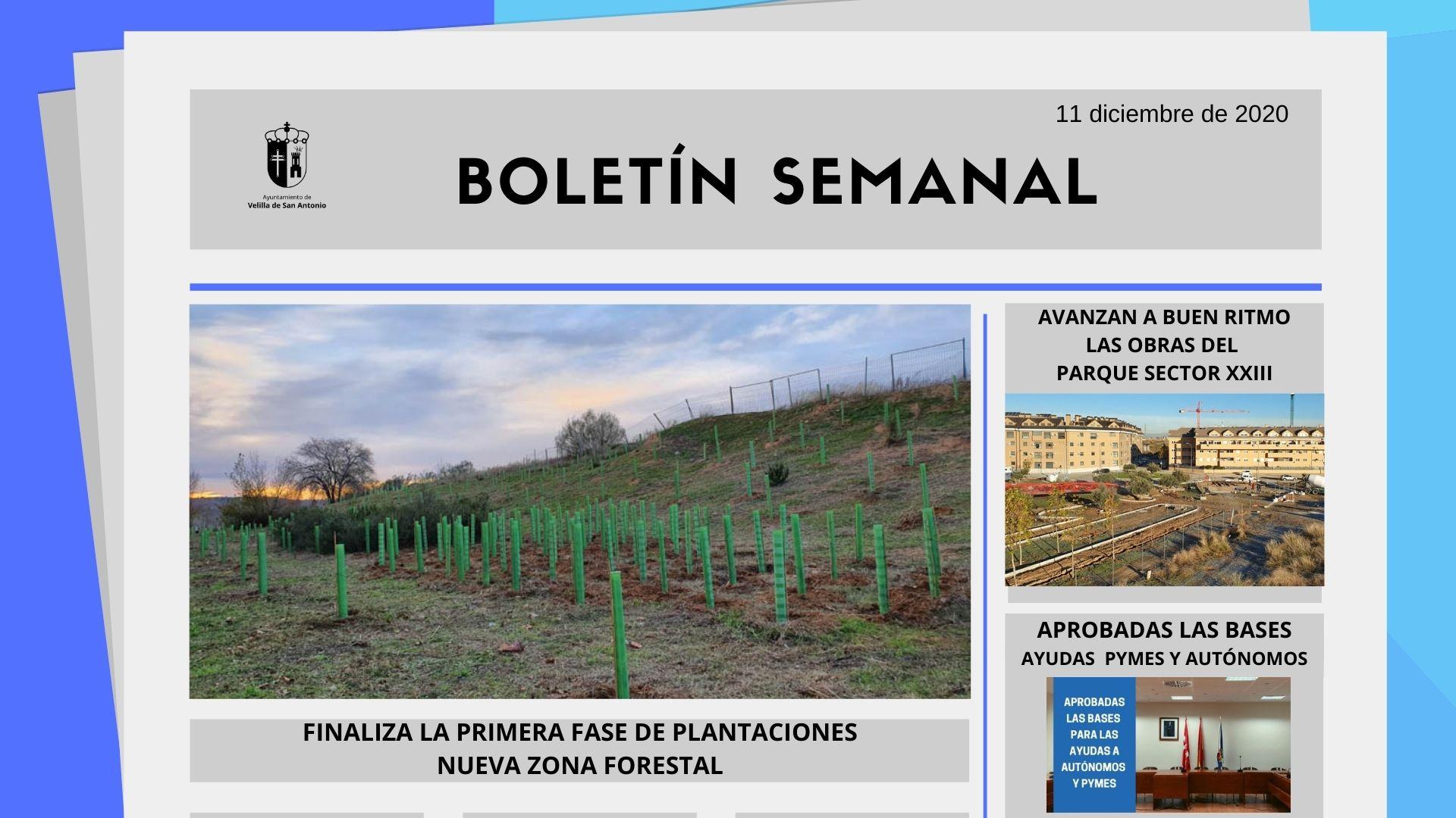 Boletín Semanal 50/2020