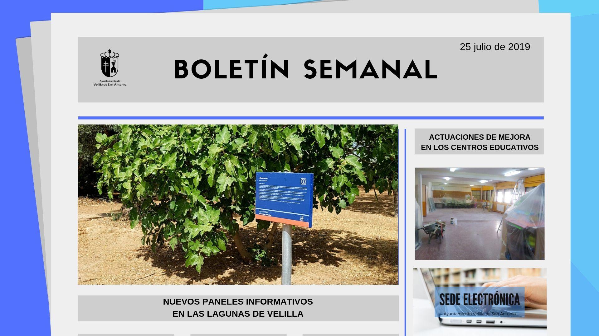 Boletín Semanal 26/2019