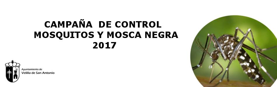 Comienza la campaña de control de mosquitos
