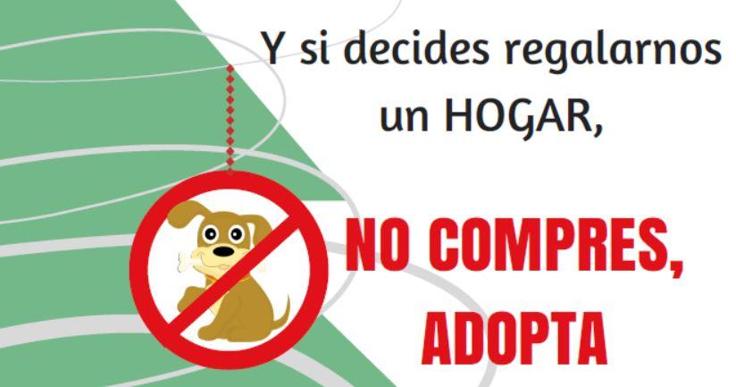 La Concejalía de Sanidad nos recuerda la responsabilidad que supone regalar mascotas en Navidad