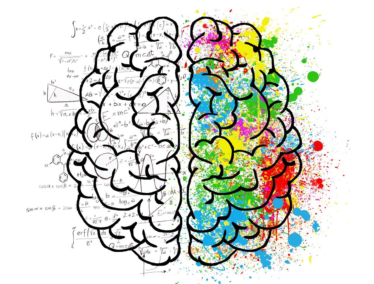 Sesiones para padres y madres sobre neurociencia educativa