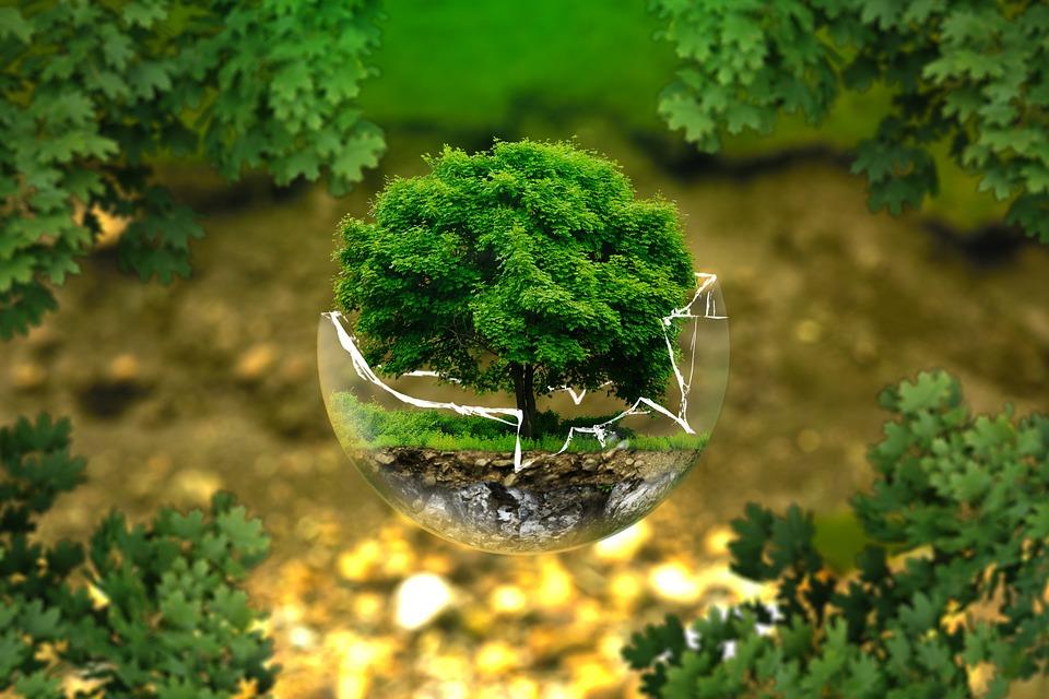 El pasado 23 de marzo se celebró la X Comisión de Medio Ambiente en el Ayuntamiento de Velilla de San Antonio.