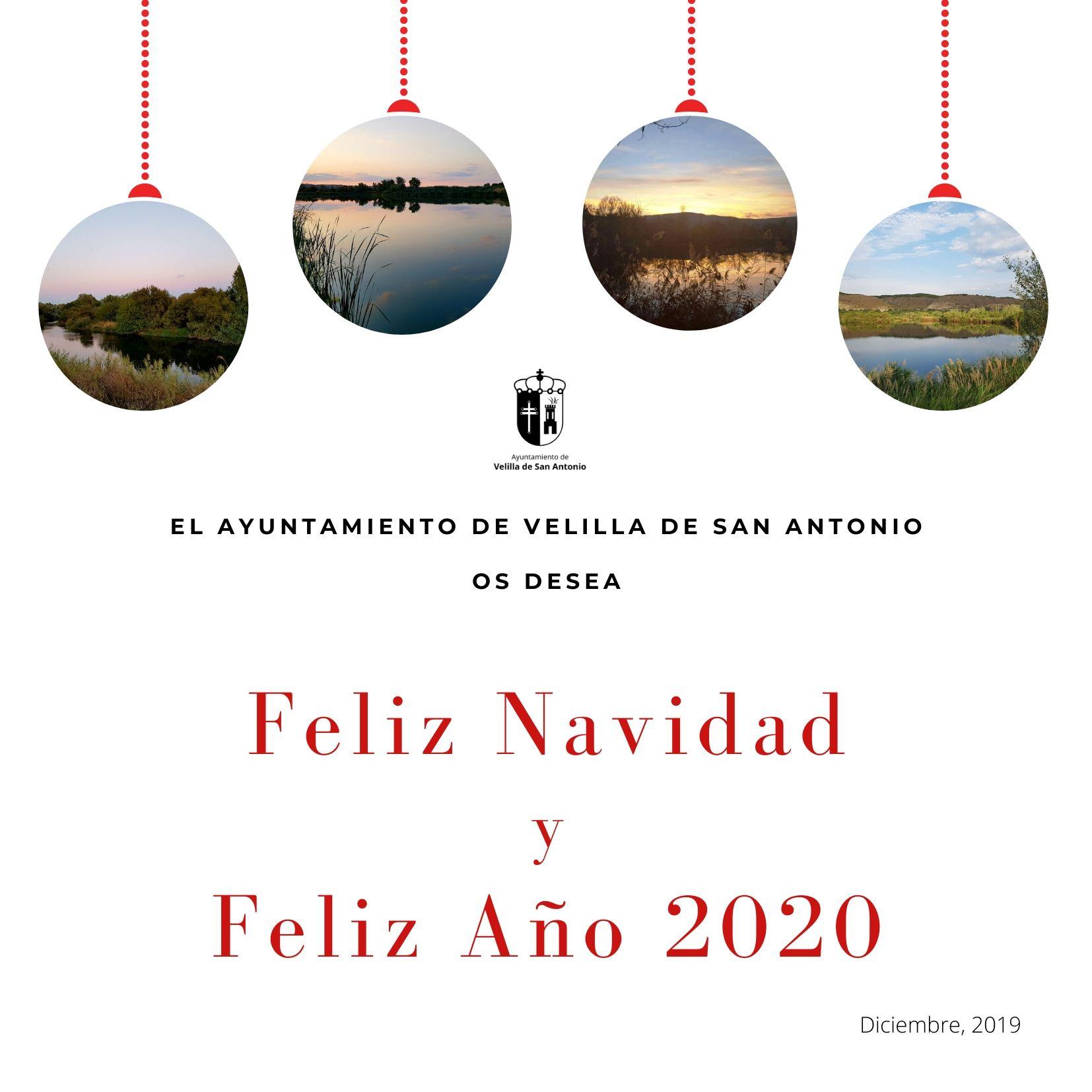 Boletín Semanal 42/2019