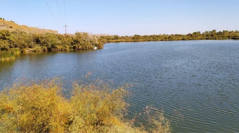 Ya han finalizado los trabajos de retirada de los peces muertos en la laguna Picón de los Conejos
