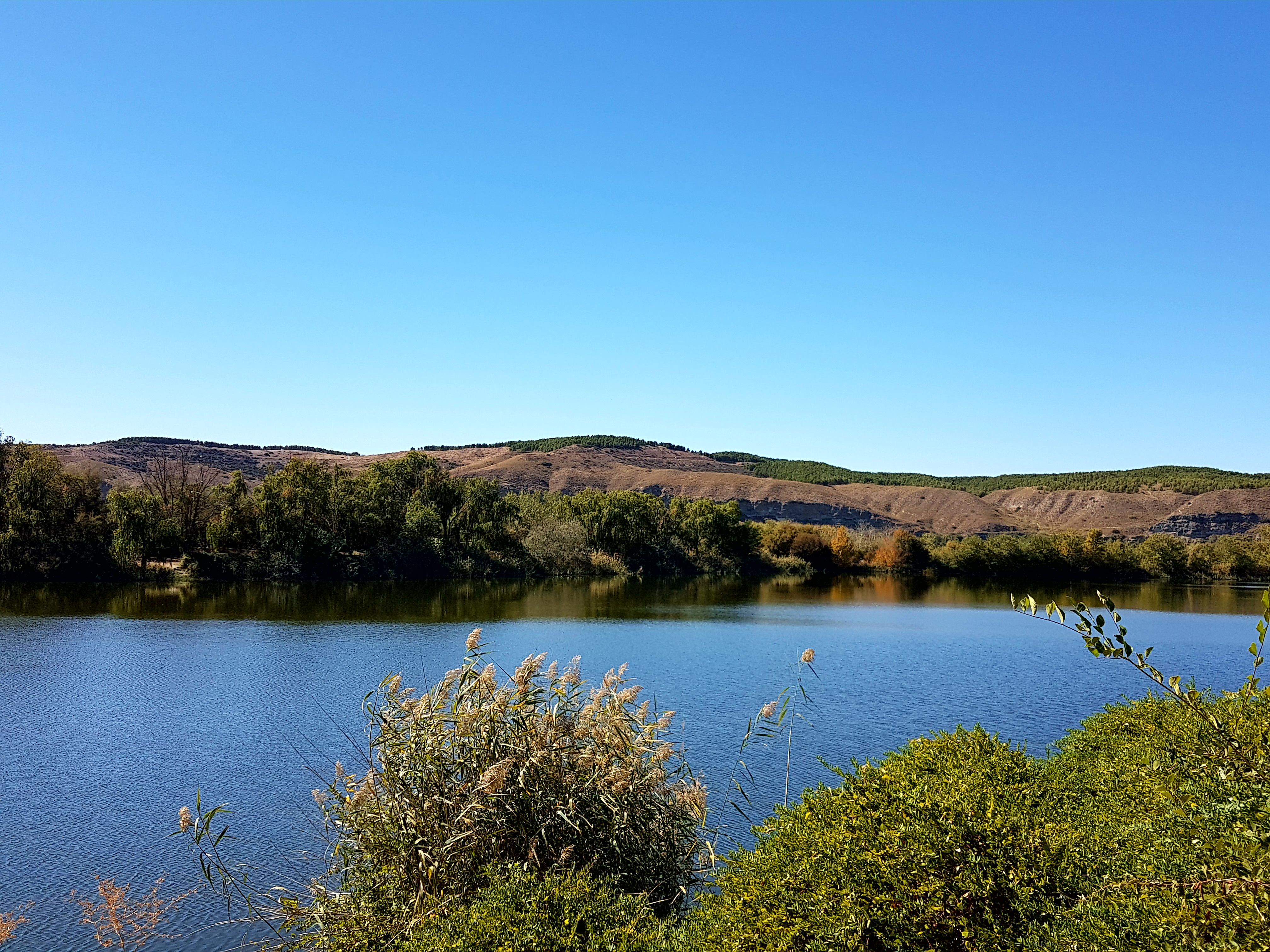 La evolución del estudio de los humedales y la instalación de bancos, papeleras y puestos de pesca en la laguna, conclusiones de la reunión de la Comisión de Medio Ambiente