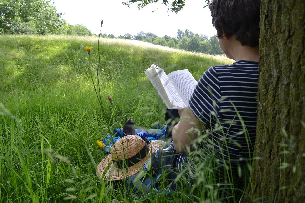 En la biblio de Velilla, te regalamos un libro para estas vacaciones
