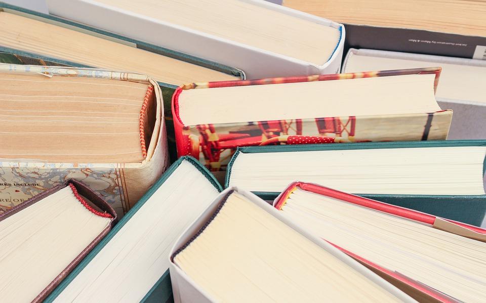 La biblioteca de Velilla nos recomienda...