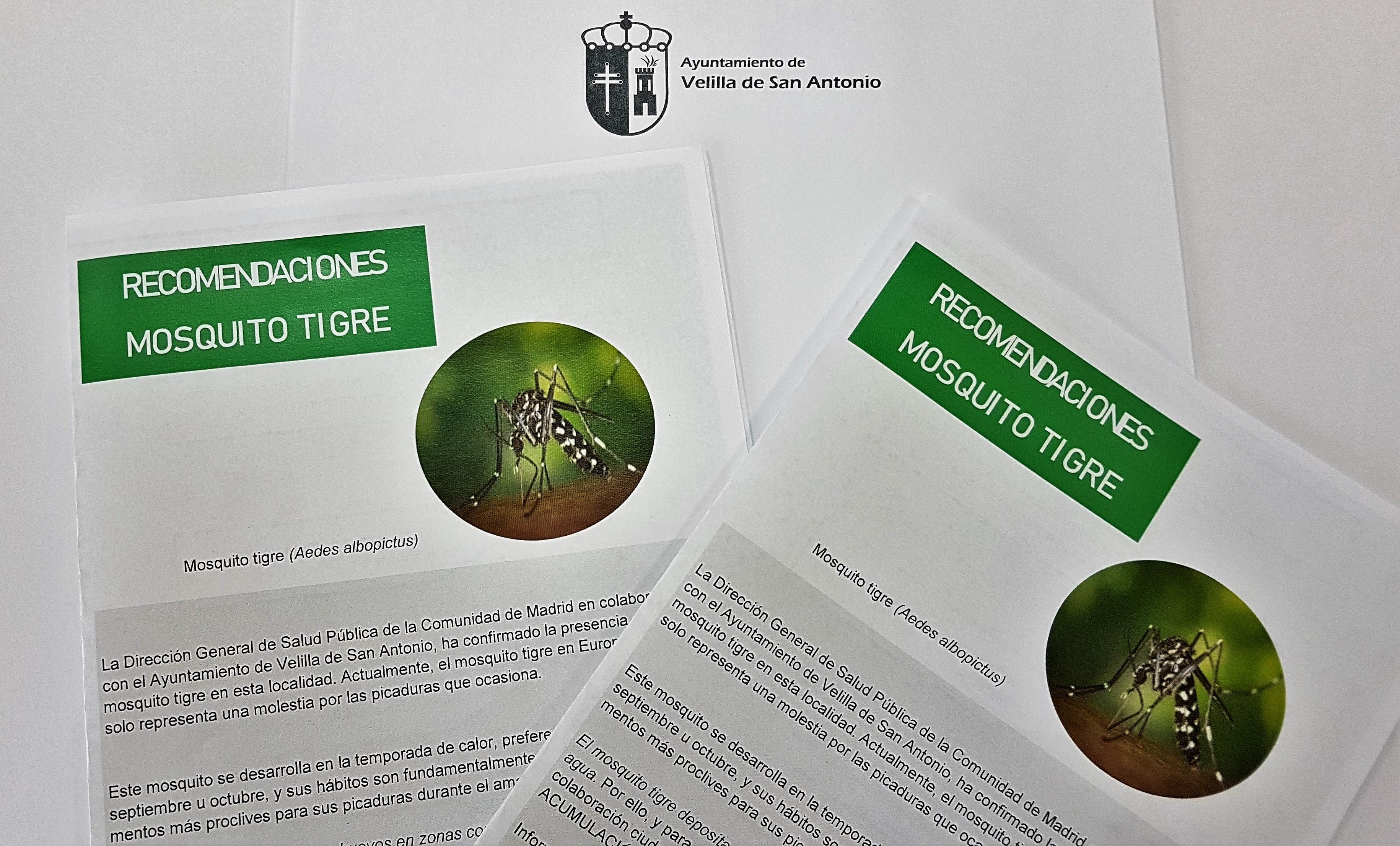 Velilla sigue trabajando para prevenir la presencia de mosquito tigre